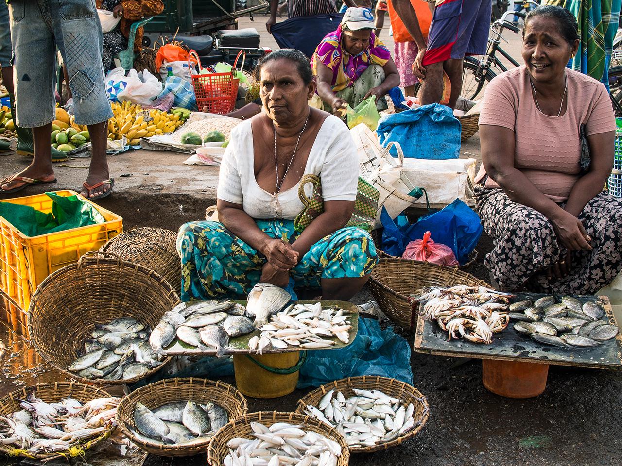 fish_market_sri_lanka1