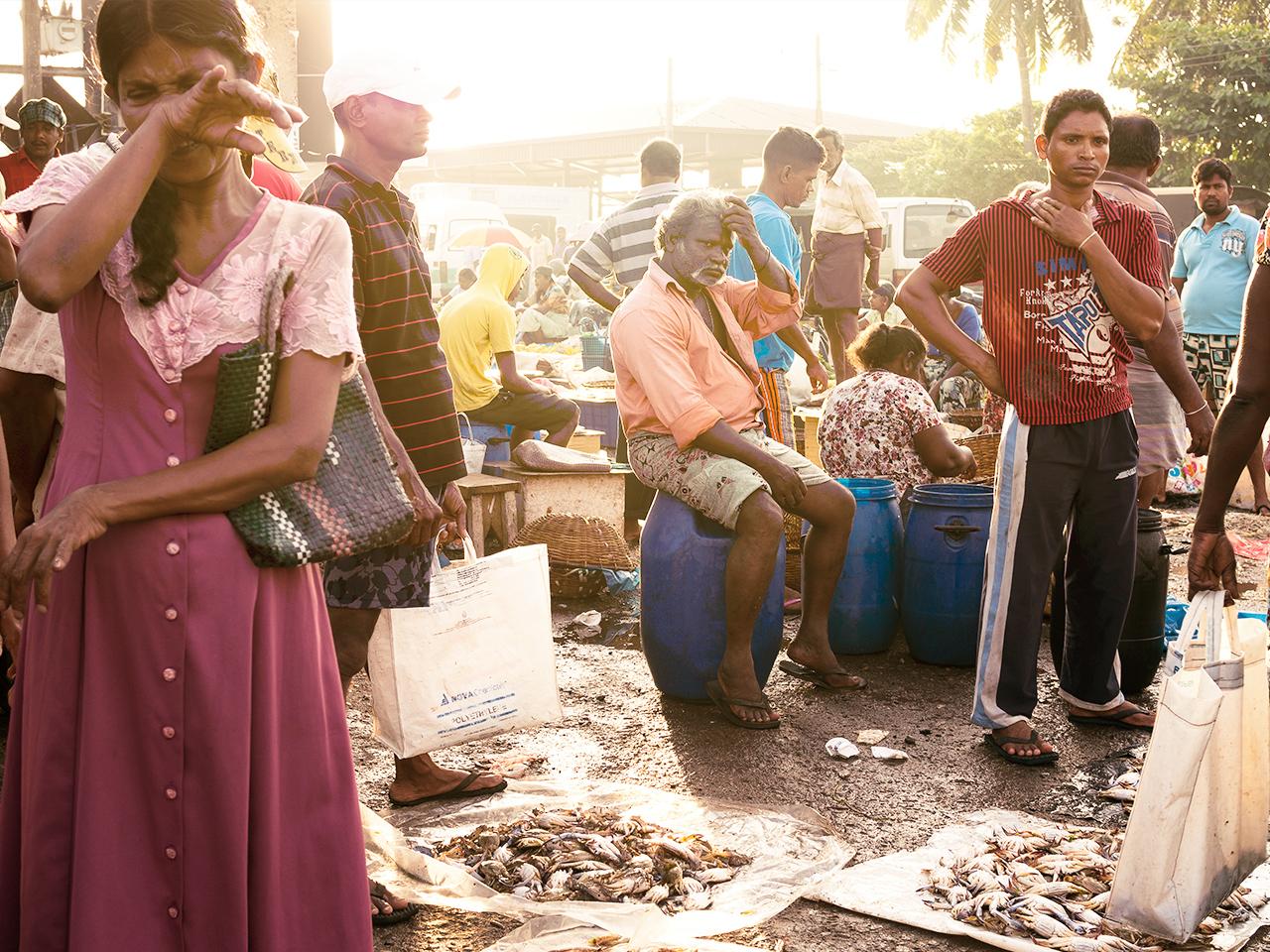 fish_market_sri_lanka2