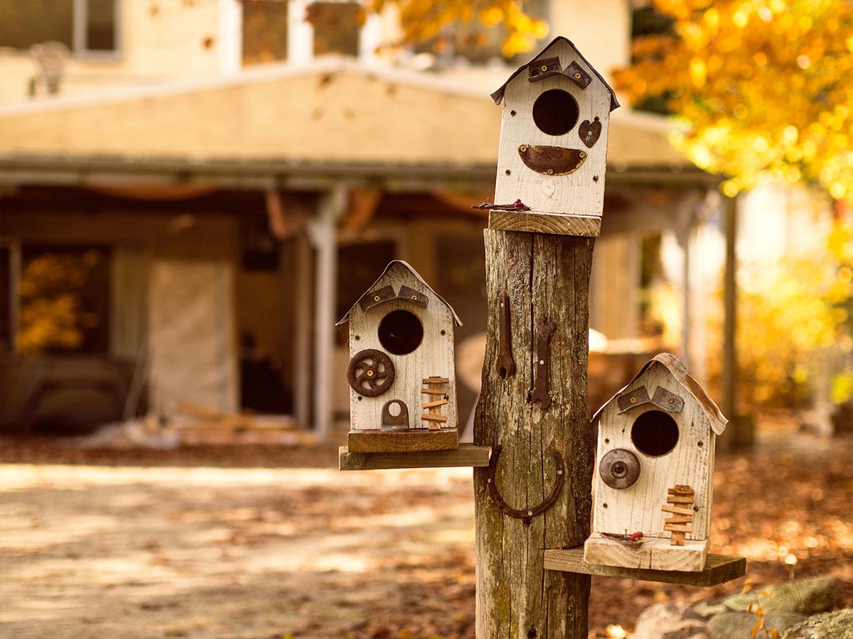 arrowtown-new-zealand-nest-box