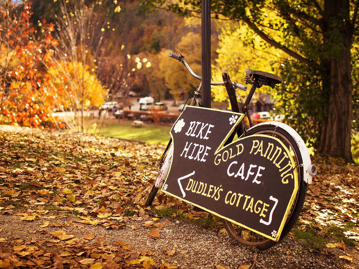 bike-hire-new-zealand-autumn