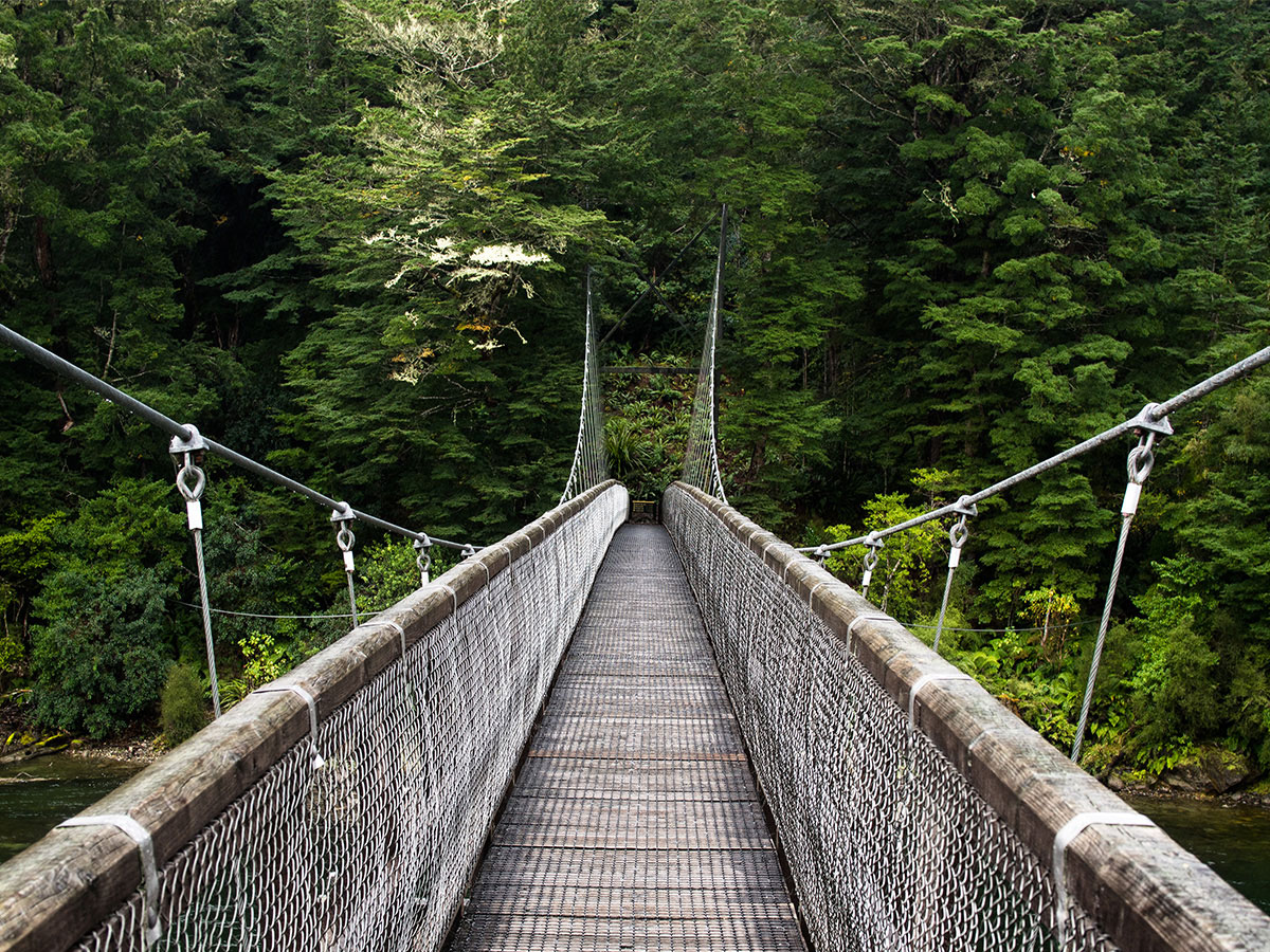 new-zealand-bridge-kepler-track