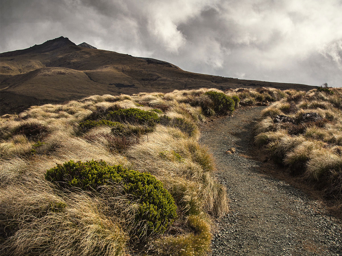new-zealand-kepler-track-mountain