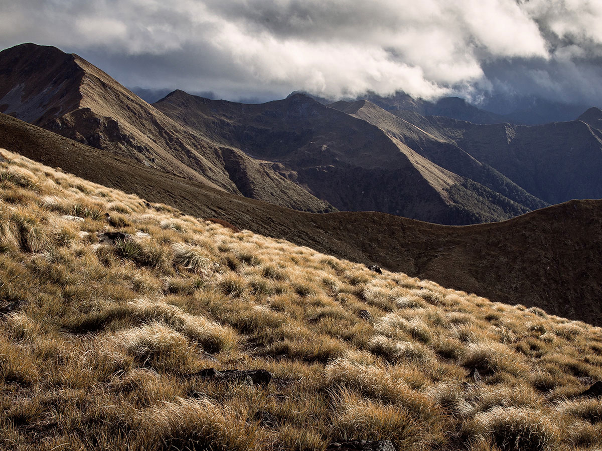 new-zealand-kepler-track3-mountain-fjordland