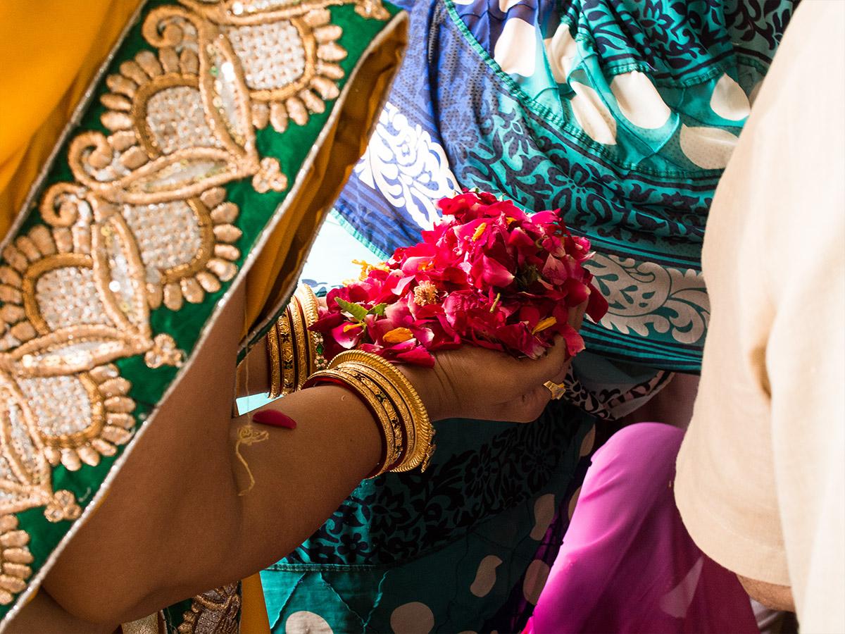 india_holi_festival_flowers