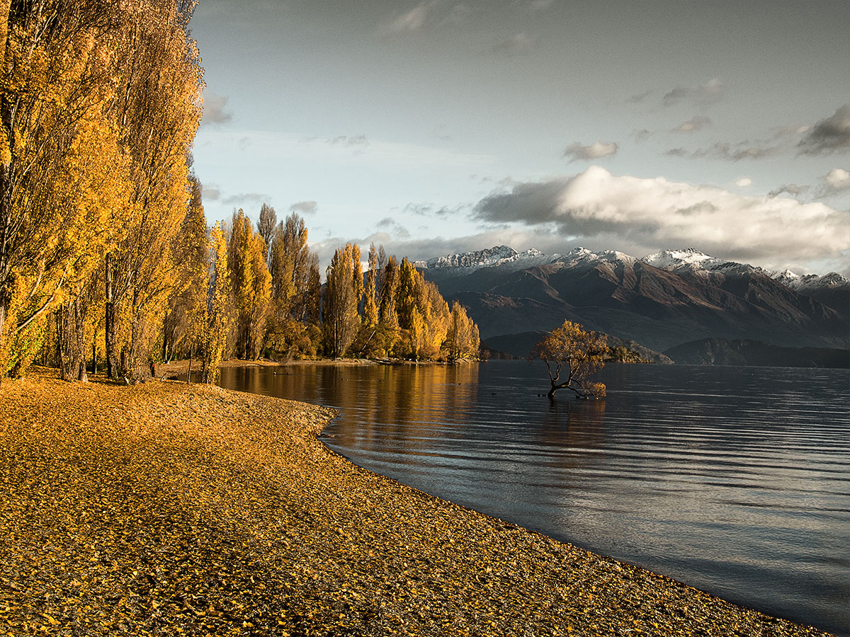 wanaka-autumn-lake-wanaka-new-zealand