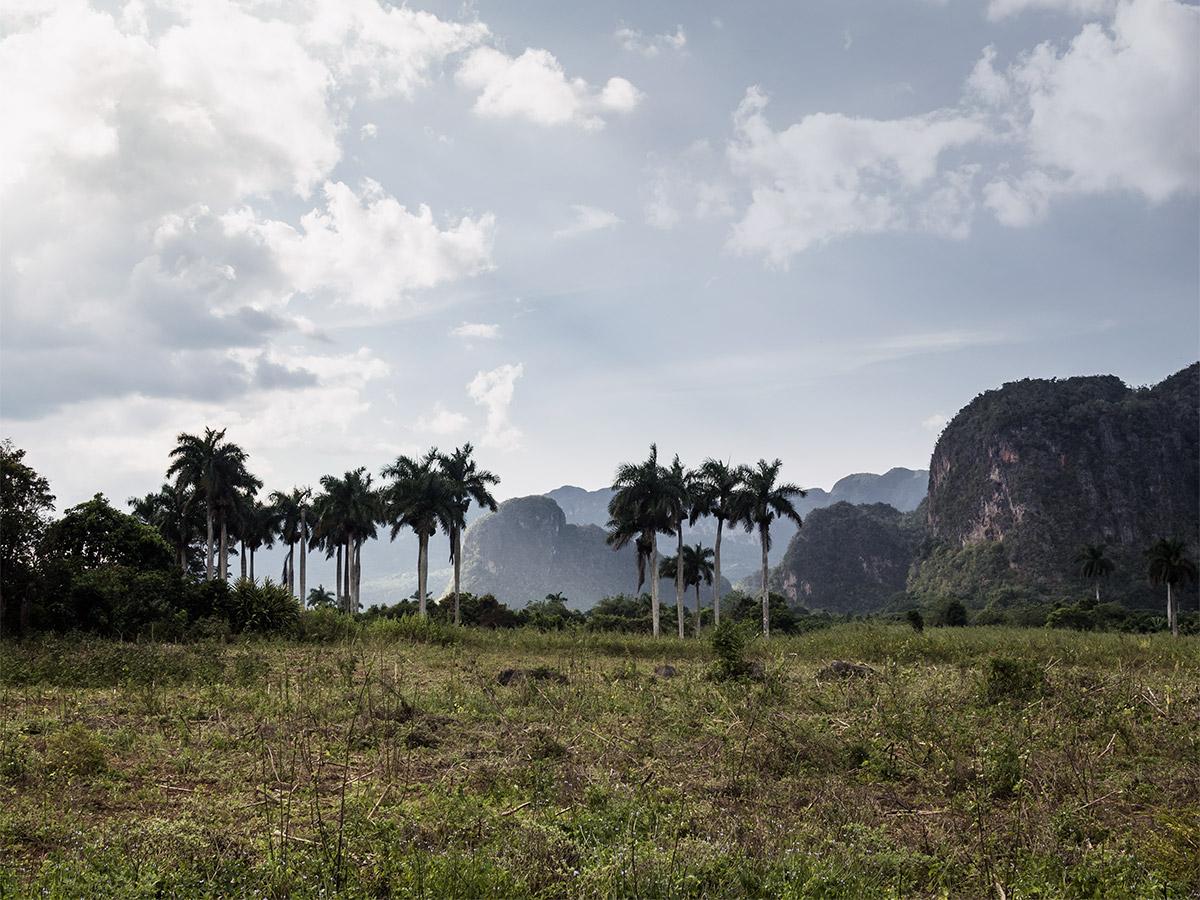 vinales_cuba_landscape